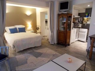 une grande chambre meublée refaite à neuf dans de l'ancien - Location de vacances - Strasbourg