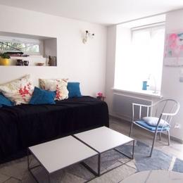 grand studio  pour 2-4 personnes avec séjour (2 lits individuels ) - Location de vacances - Strasbourg