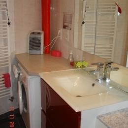 salle de bain + lave linge - Location de vacances - Boersch