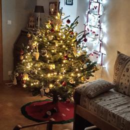 Le Père-Noël va pouvoir passer! - Location de vacances - Wangenbourg-Engenthal