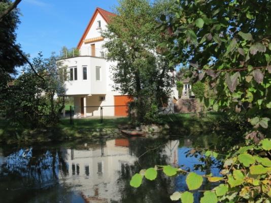 Krimmeri et rhin tortu - Location de vacances - Strasbourg