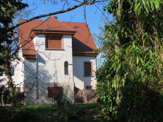 Krimmeri et jardin - Location de vacances - Strasbourg