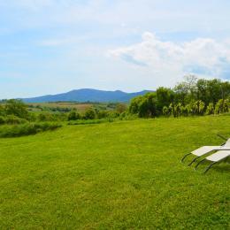 Vue du gîte Les Hauts de Rosheim : Mont Ste Odile, Vignoble - Location de vacances - Rosheim