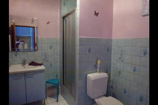 salle d'eau - Chambre d'hôtes - Breuschwickersheim