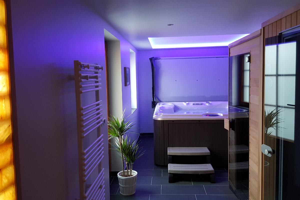 L'espace détente, SPA, sauna, Hammam - Location de vacances - Scharrachbergheim-Irmstett
