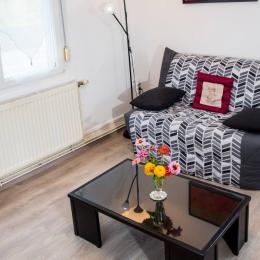 Une chambre avec 2 lits simples. - Location de vacances - Muttersholtz