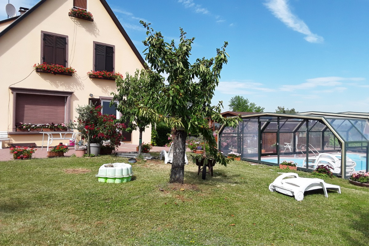 - Location de vacances - Mittelbergheim