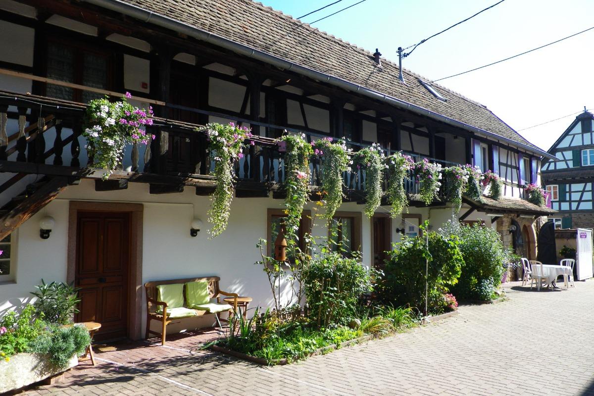 La chambre n°3 - vue globale - Chambre d'hôtes - Blaesheim