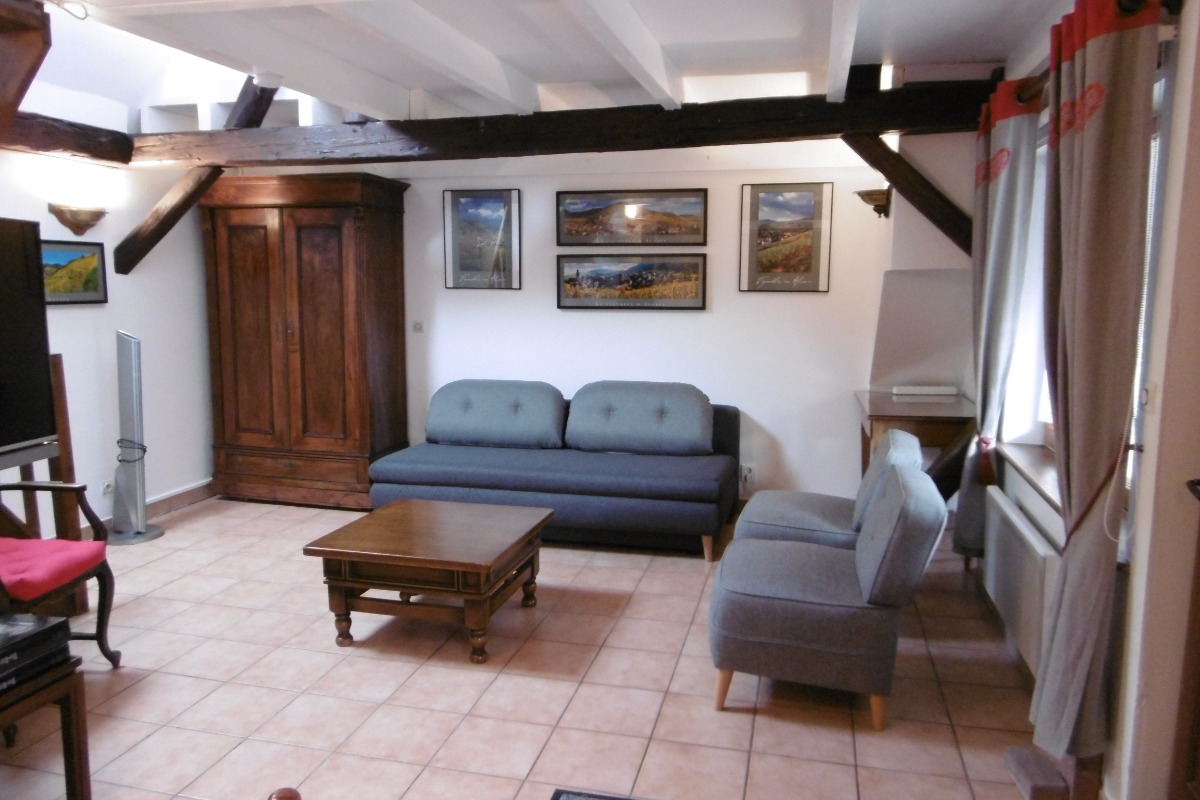 Le salon - Location de vacances - Blaesheim