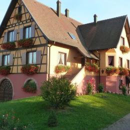 Gîte Le Marronnier au 1er étage de la maison - Location de vacances - Epfig