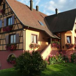 Gîte Gitzelbrunnen au rez-de-chaussée de la maison - Location de vacances - Epfig