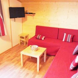 Espace salon avec TV - Location de vacances - Wangenbourg-Engenthal