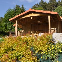 - Location de vacances - Wangenbourg-Engenthal