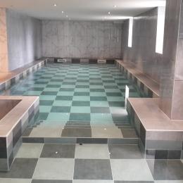 Piscine avec deux bassins continus. Un bassin de 10X3,5 mètres avec profondeur de 145 cm et un petit bassin de 3,5X3,5 m et profondeur 50 cm - Location de vacances - Diemeringen