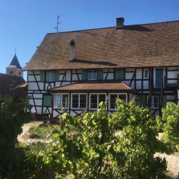 - Location de vacances - Fessenheim-le-Bas