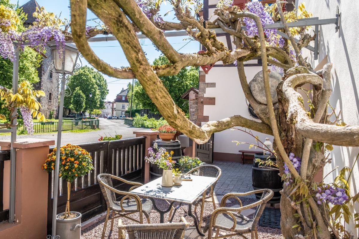 La terrasse sous la glycine - Location de vacances - Wissembourg