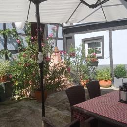 le coin repas   - Location de vacances - Schiltigheim