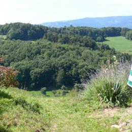 Vue de la terrasse - Location de vacances - Labaroche