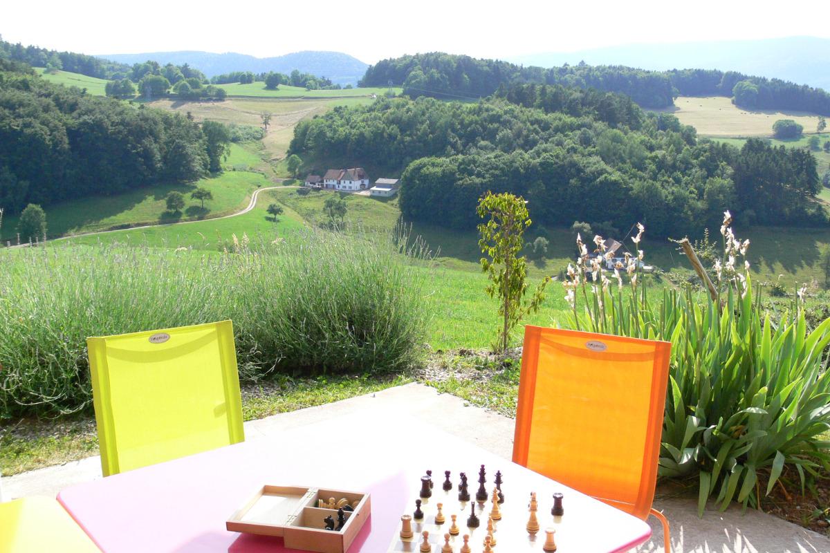 Vue de la terrasse du gîte le grand tétras - Location de vacances - Labaroche