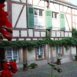 gîte - Location de vacances - Ribeauvillé