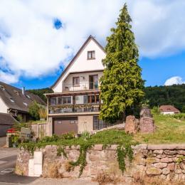 Cuisine aménagée avec plaque vitro, lave vaisselle, lave linge, petit four multifonctions - Location de vacances - Riquewihr