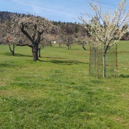 salle de bain - Location de vacances - Labaroche