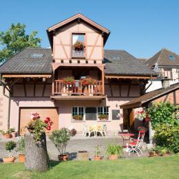 - Location de vacances - Ammerschwihr
