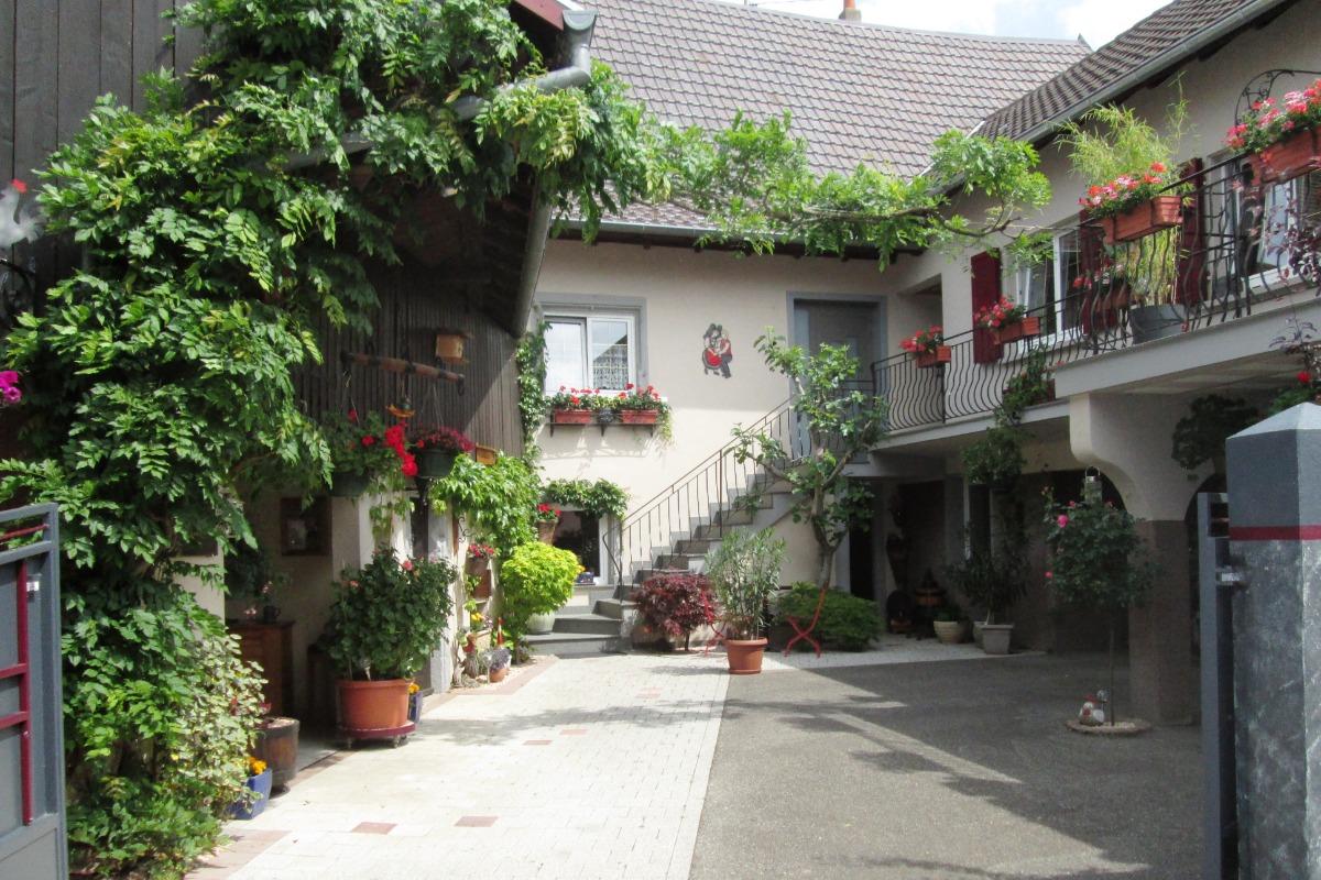 COUR 110 M² - Location de vacances - Orschwihr