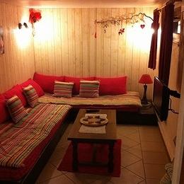 salon télé rez de jardin - Location de vacances - Sewen