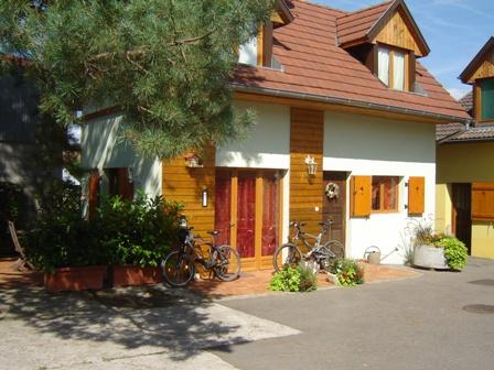 - Location de vacances - Hirtzbach