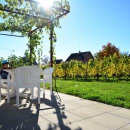 Gîte Guewurz - Location de vacances - Rouffach