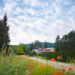 Chambre en R+1 avec sa salle de bain - Location de vacances - Osenbach