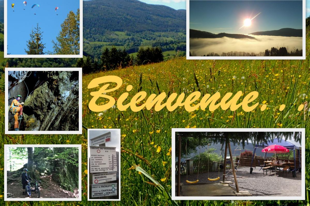 Dans le parc naturel régional des ballons des Vosges - Location de vacances - Le Bonhomme