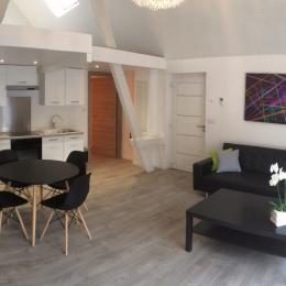 cuisine salon  - Location de vacances - Ingersheim