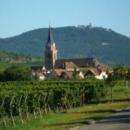 - Location de vacances - Bergheim