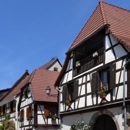 - Location de vacances - Beblenheim