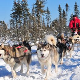 la neige est bientôt au rendez-vous - Location de vacances - Le Bonhomme