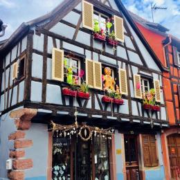- Location de vacances - Kaysersberg Vignoble