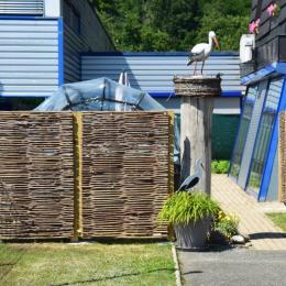 Belle pièce à vivre avec cheminée. - Location de vacances - Sentheim