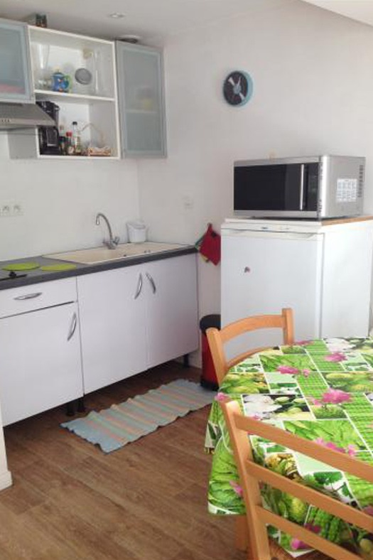 Terrasse avec le salon de jardin réservé à l'appartement (je suis désolée mais certaines photos qui von suivre sont de travers mais je ne suis pas douée en informatique...) - Location de vacances - Lyon