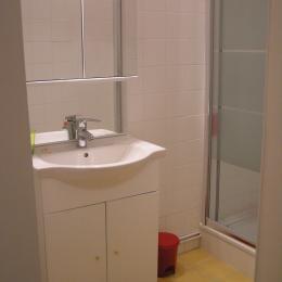 Salle de bain avec lavabo, meuble de rangement, grande douche, lave linge, WC - Location de vacances - Lyon