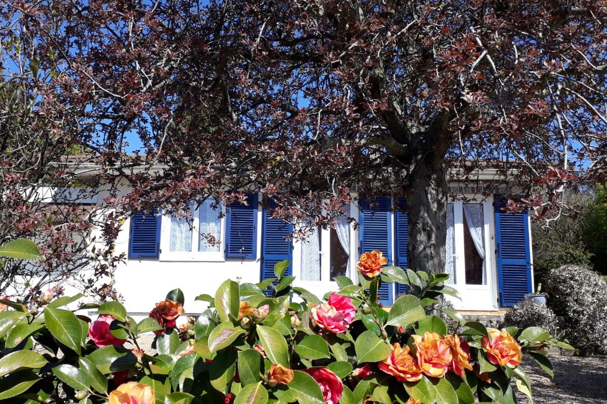 - Location de vacances - Villié-Morgon