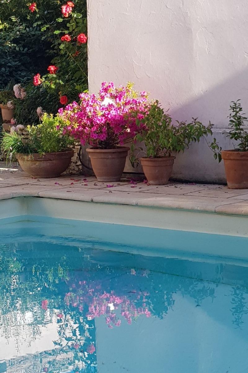 Quiétude au bord de la piscine - Chambre d'hôtes - Lyon