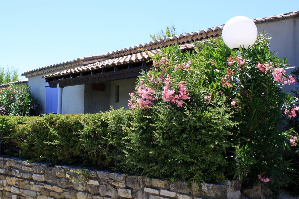 Piscine & buvette - Location de vacances - Bessas