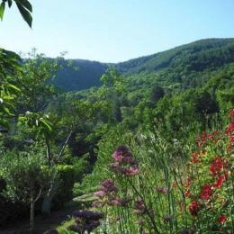 vue devant la terrasse - Location de vacances - Saint-Cirgues-de-Prades