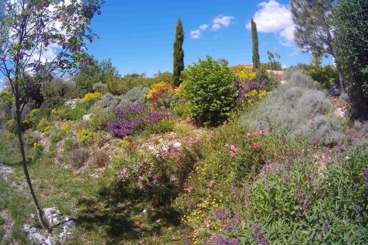 Printemps 2017, jardin locations - Location de vacances - Vogüé