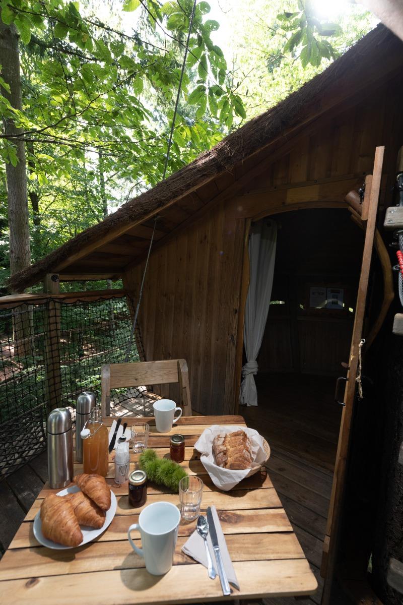 Ecureuil cabane aventure dans les arbres avec acc s par - Chambre d hote cabane dans les arbres ...