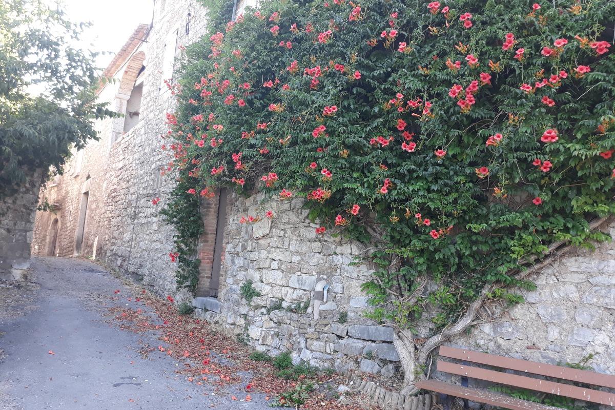 - Location de vacances - Saint-André-de-Cruzières