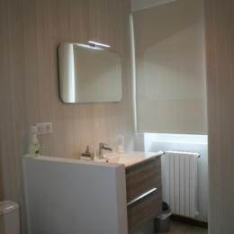 La salle d'eau - Chambre d'hôtes - Annonay