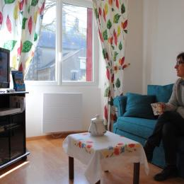 Salon TV  - Location de vacances - Bessé-sur-Braye